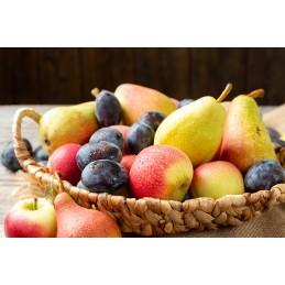 Kammerhof - Apfel, Birne und Pflaumen Fruchtmix - 100g